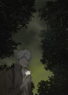 Mushishi Tokubetsu Hen: Hihamu Kage, TV-Special