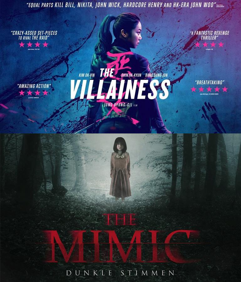 Zwei asiatische Filmempfehlungen für Action- und Horrorfans: The Vill