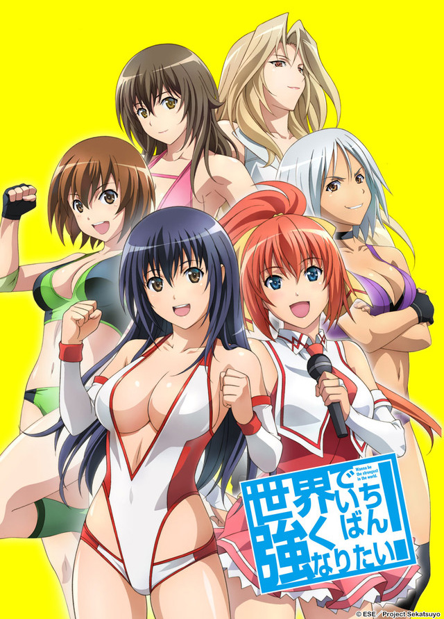 Erotisches Wrestling Entertainment bei Kazé: Der Anime Wanna be the s